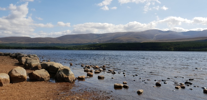 Loch Morlich. Lake. Water. Scotland. Cairngorms national park. 4 Freckled Faces