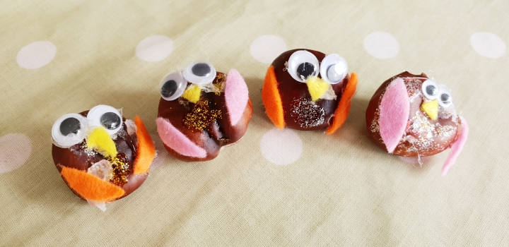 Conker owls. Conkers decorated with felt and goggly eyes to look like owls. 4 Freckled Faces.
