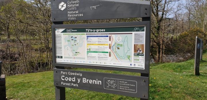 Coed y Brenin – Forest Park inWales