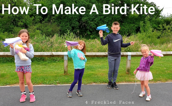 How To Make A Bird Kite