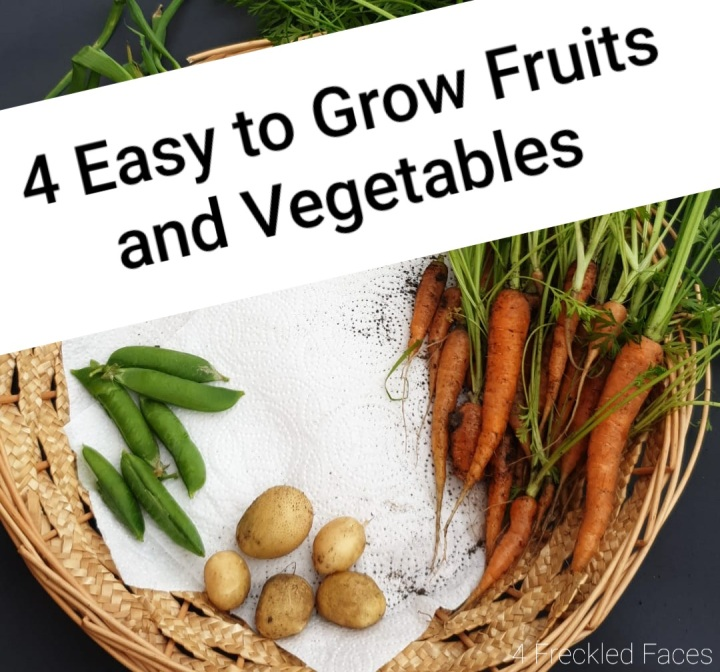 4 Easy To Grow Fruit and Vegetables.